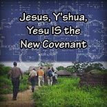 jesus_yeshua_is_the_new_covenant.jpg housechurch.com